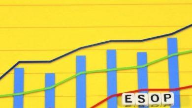 Bạn đã hiểu về cổ phiếu Esop chưa ?